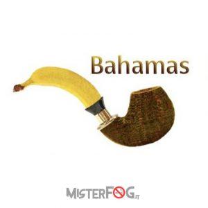 azhad's elixirs aroma bahamas