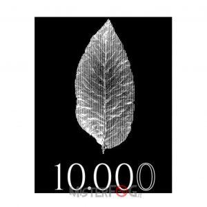 azhad's elixirs 10000